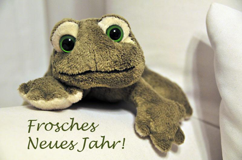 Frosches_Neues_Jahr_20151231_0024